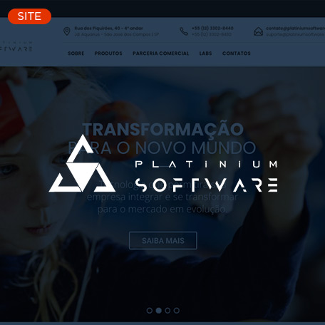 platinium software